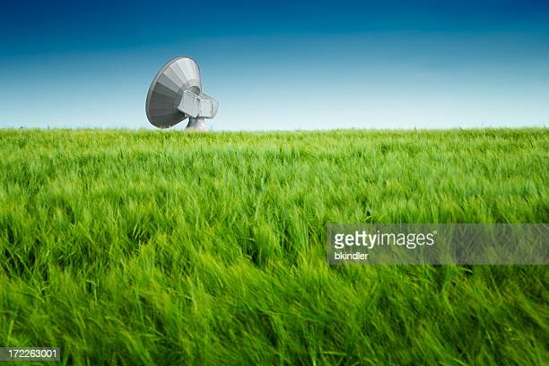 Antennes Field