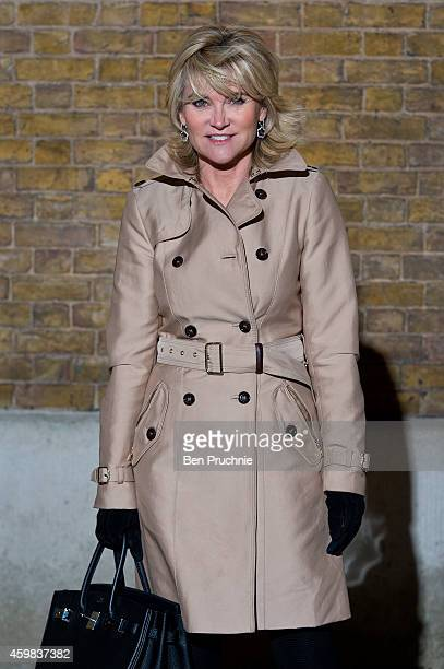 Anthea Turner attends the private view of Stasha Palos And The Stars Shine Down at Saatchi Gallery on December 2 2014 in London England