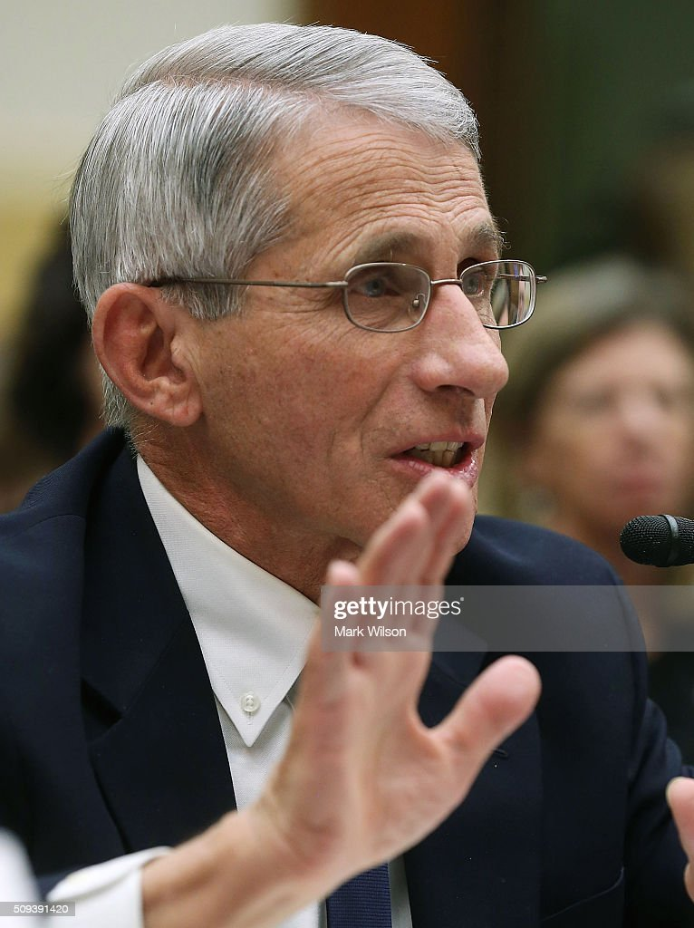 Anthony Fauci, director of the National Institute of Allergy and Infectious Diseases, testifies during a House Foreign Affairs Committee hearing on Capitol Hill, February 10, 2016 in Washington, DC. The committee heard testimony from health officials on the Zika virus epidemic, and its threat to the Americas.