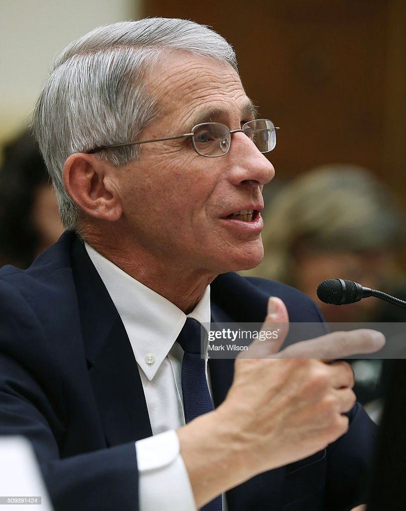 <a gi-track='captionPersonalityLinkClicked' href=/galleries/search?phrase=Anthony+Fauci&family=editorial&specificpeople=964622 ng-click='$event.stopPropagation()'>Anthony Fauci</a>, director of the National Institute of Allergy and Infectious Diseases, testifies during a House Foreign Affairs Committee hearing on Capitol Hill, February 10, 2016 in Washington, DC. The committee heard testimony from health officials on the Zika virus epidemic, and its threat to the Americas.