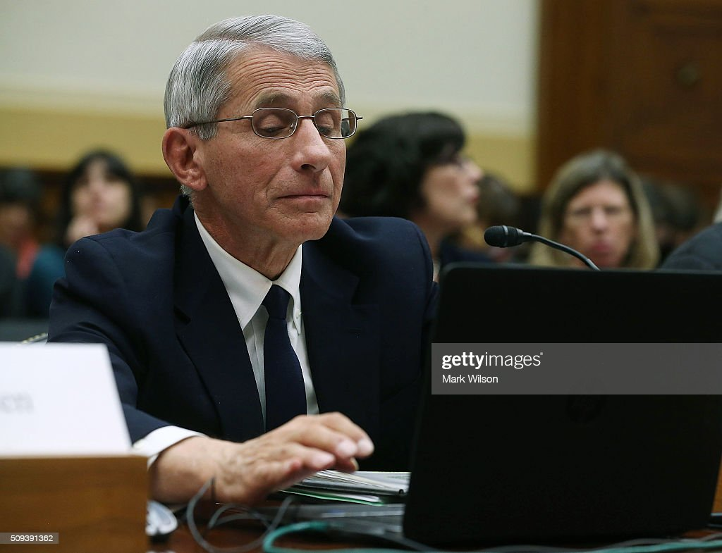 Anthony Fauci, director of the National Institute of Allergy and Infectious Diseases, looks at his computer during a House Foreign Affairs Committee hearing on Capitol Hill, February 10, 2016 in Washington, DC. The committee heard testimony from health officials on the Zika virus epidemic, and its threat to the Americas.