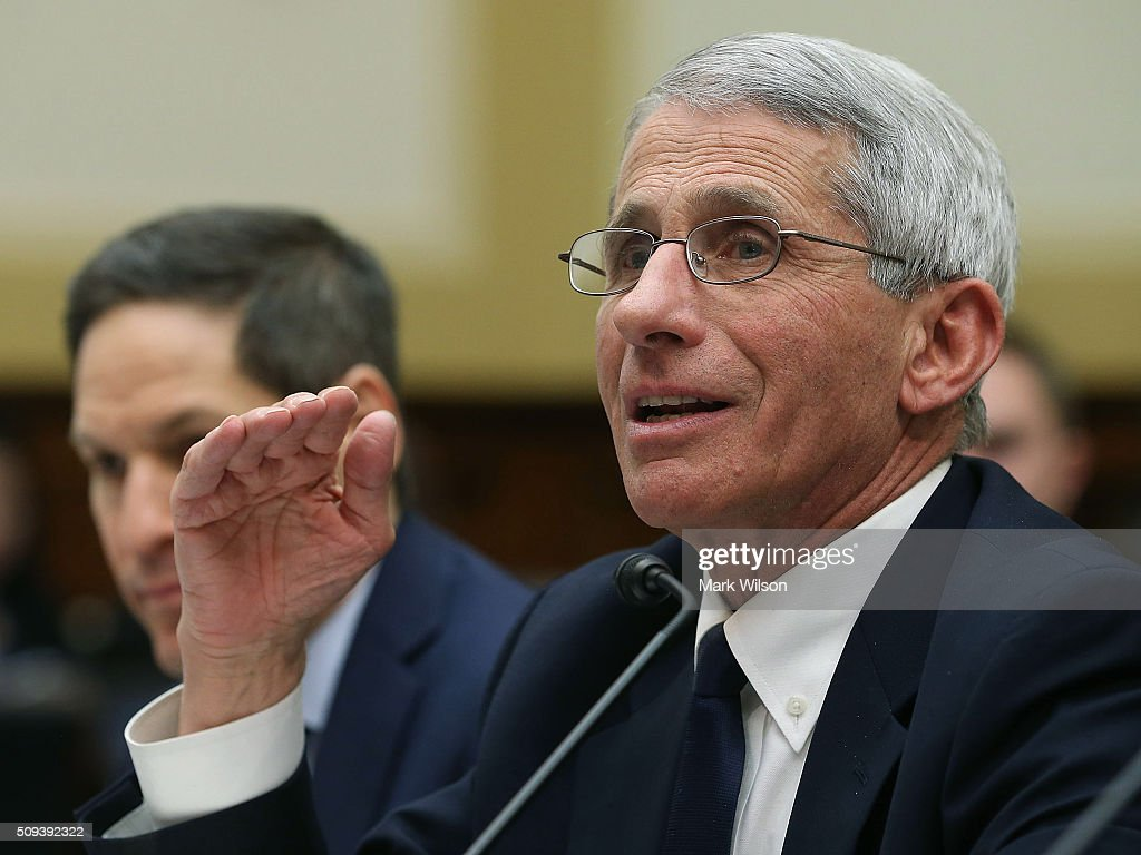 <a gi-track='captionPersonalityLinkClicked' href=/galleries/search?phrase=Anthony+Fauci&family=editorial&specificpeople=964622 ng-click='$event.stopPropagation()'>Anthony Fauci</a> (R), director of the National Institute of Allergy and Infectious Diseases, testifies while flanked by <a gi-track='captionPersonalityLinkClicked' href=/galleries/search?phrase=Tom+Frieden&family=editorial&specificpeople=11365236 ng-click='$event.stopPropagation()'>Tom Frieden</a>, director of the Centers for Disease Control and Prevention, during a House Foreign Affairs Committee hearing on Capitol Hill, February 10, 2016 in Washington, DC. The committee heard testimony from health officials on the Zika virus epidemic, and its threat to the Americas.
