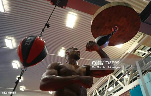 Anthony Joshua during a media session at the English Institute of Sport Sheffield PRESS ASSOCIATION Photo Picture date Tuesday October 17 2017 See PA...