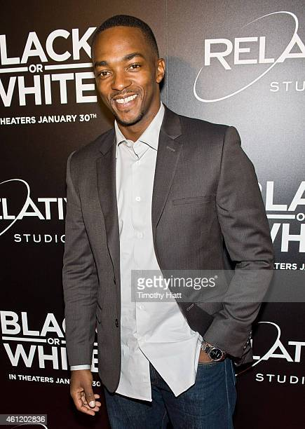 Anthony Mackie attends a screening of 'Black Or White' at Kerasotes Showplace ICON on January 8 2015 in Chicago Illinois