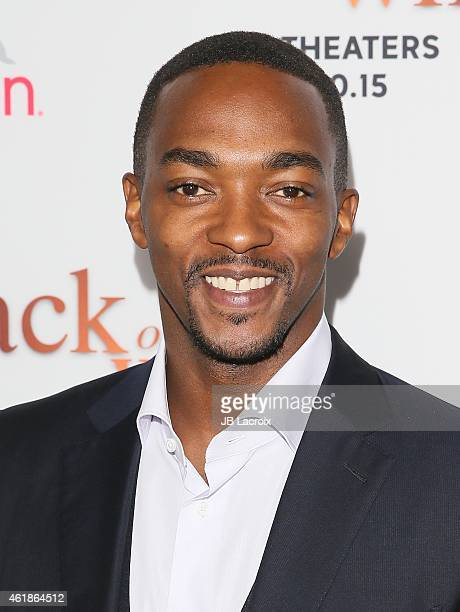 Anthony Mackie attends the Los Angeles premiere of 'Black or White' held at Regal Cinemas on January 20 2015 in Los Angeles California