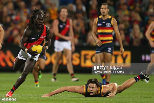 Anthony McDonaldTipungwuti of the Bombers is tackled by Jake Lever of the Crows during the 2017 AFL round 04 match between the Adelaide Crows and the...