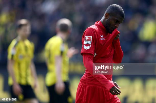 Anthony Modeste of Koeln is seen during the Bundesliga match between Borussia Dortmund and 1 FC Koeln at Signal Iduna Park on April 29 2017 in...