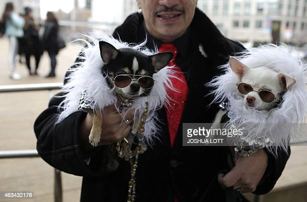 Anthony Rubio stands outside of the Lincoln Center with his two Chihuahua dogs Bogie and Kimba The White Lion during New York Fashion Week February...