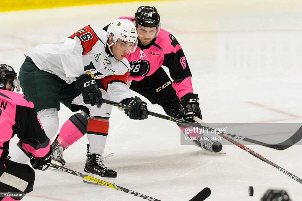 Anthony Sorrentino #36 of the Halifax Mooseheads and Jeremy Roy #81 of the Blainville-Boisbriand Armada chase the puck during the QMJHL game at the Centre d'Excellence Sports Rousseau on October 15, 2016 in Boisbriand, Quebec, Canada.