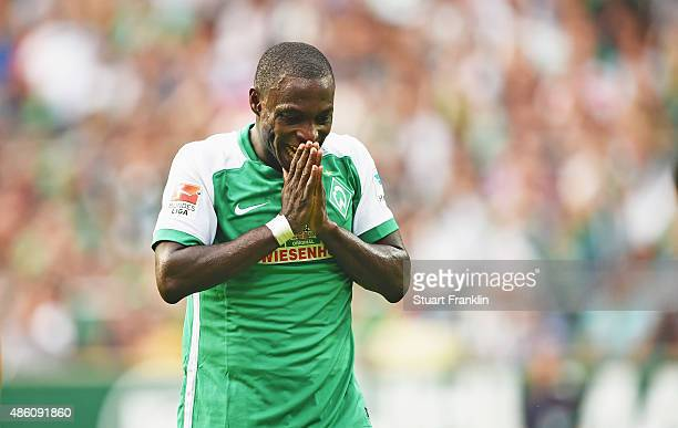 Anthony Ujah of Bremen reacts during the Bundesliga match between Werder Bremen and Borussia Moenchengladbach at Weserstadion on August 30 2015 in...
