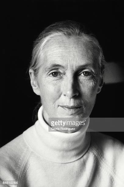 Anthropologist and UN Messenger of Peace Jane Goodall is photographed for El Indepenente