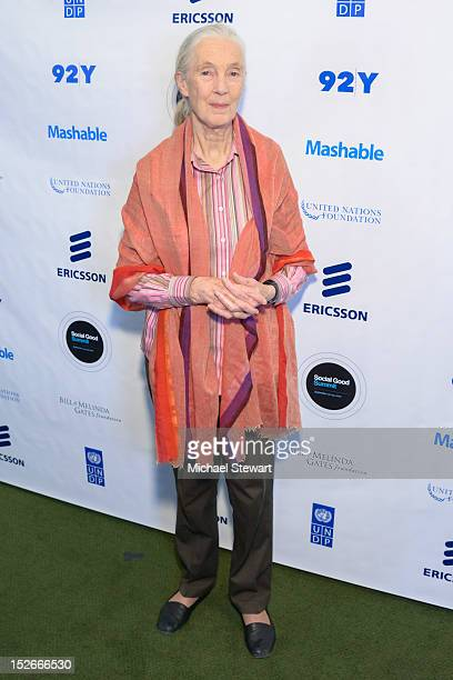 Anthropologist Jane Goodall attends the 2012 Social Good Summit at the 92Y on September 23 2012 in New York City