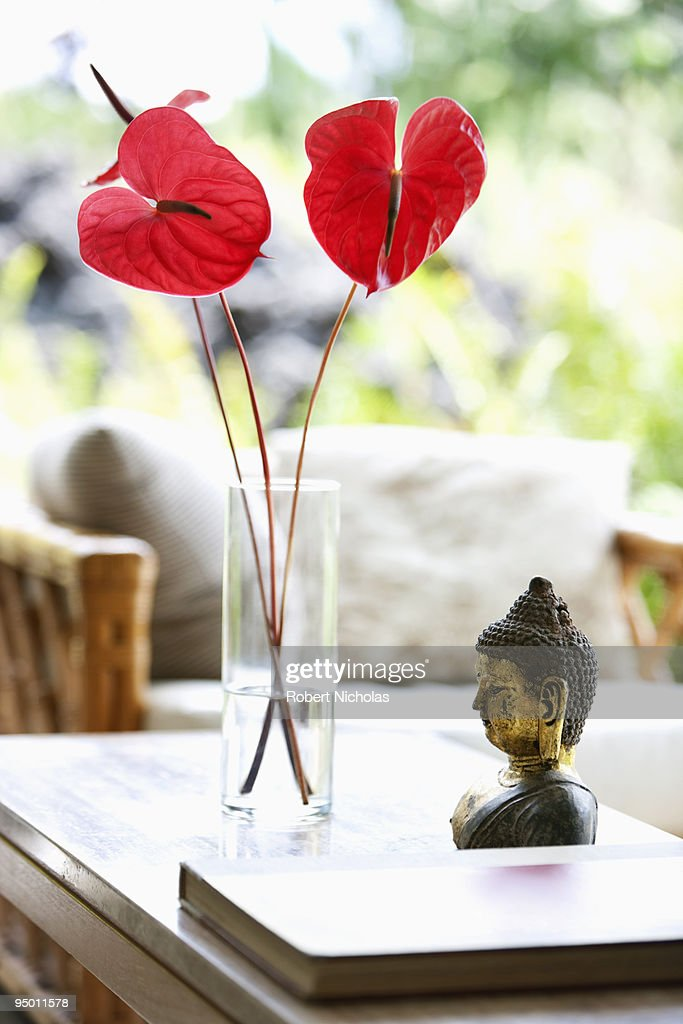 Anthuriums in vase : Stock Photo