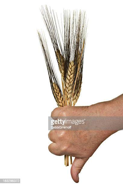 Anti Wheat Isolated