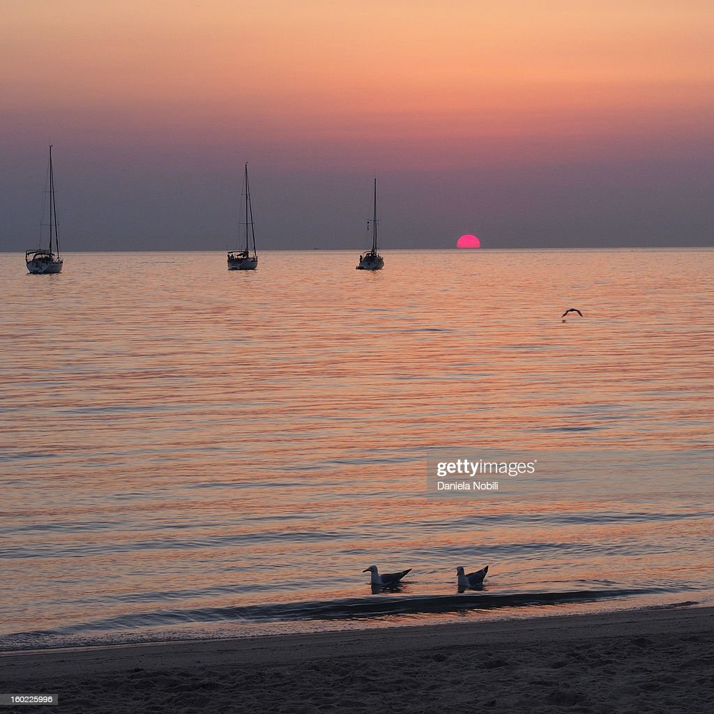CONTENT] Antibes, Cote d'Azur, France. Sunrise a Salis Beach (plage de la Salis). Three boats and two seagulls resting. One seagull is flying, sun is red and rising. Beautiful scene.