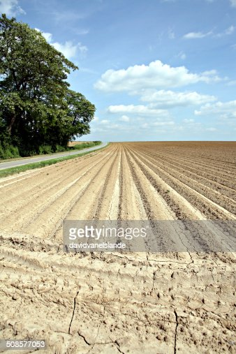 Anticonformism / Furrow : Stockfoto