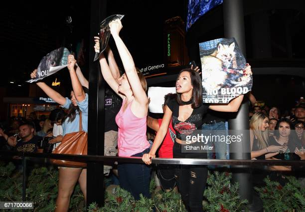 Antifur activists protest an appearance by television personality Kylie Jenner as she arrives at Sugar Factory American Brasserie at the Fashion Show...