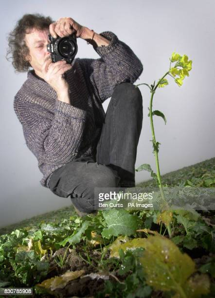 AntiGM crop protester Nigel Mullan takes a photographic record of a plant at a site near Munlochy on the Black Isle in Scotland where AntiGM crop...
