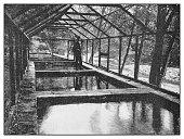 Antique photo: Preserve Ponds, Derwent river