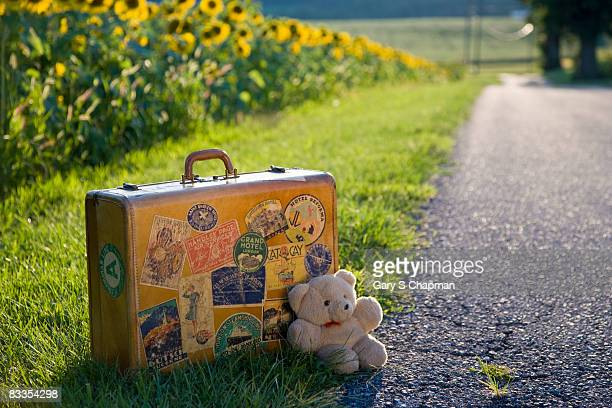 Antique suitcase beside country road