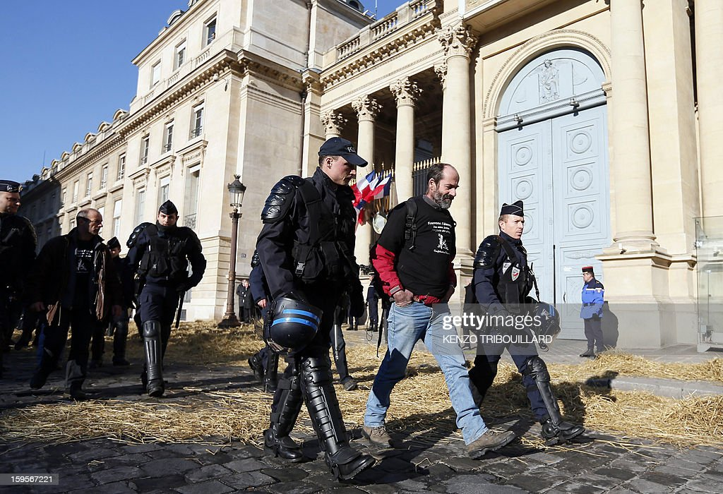 Anti-riot police evacuate demonstrators who protested of the French farmers union 'Confederation Paysanne' in front of the French National Assembly, on January 16, 2013 in Paris, against breeding c...