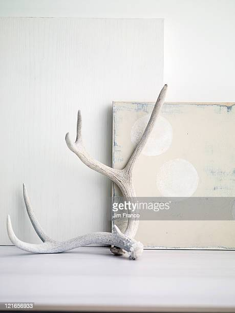 antlers leaning against white paintings