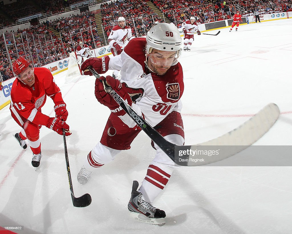 <a gi-track='captionPersonalityLinkClicked' href=/galleries/search?phrase=Antoine+Vermette&family=editorial&specificpeople=206302 ng-click='$event.stopPropagation()'>Antoine Vermette</a> #50 of the Phoenix Coyotes battles in the corner with <a gi-track='captionPersonalityLinkClicked' href=/galleries/search?phrase=Daniel+Alfredsson&family=editorial&specificpeople=201853 ng-click='$event.stopPropagation()'>Daniel Alfredsson</a> #11 of the Detroit Red Wings during a NHL game at Joe Louis Arena on October 10, 2013 in Detroit, Michigan. The Coyotes won 4-2