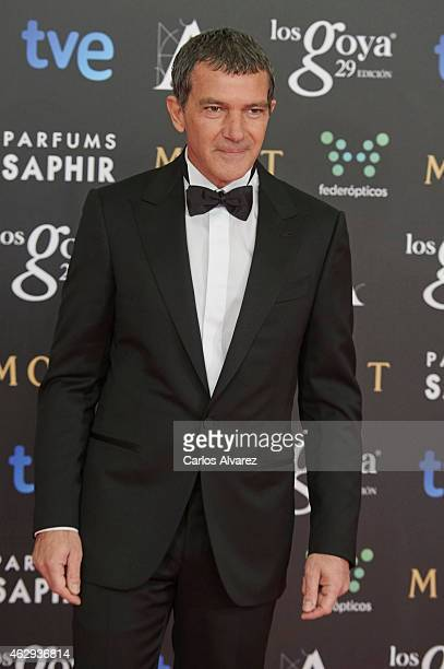 Antonio Banderas attends Goya Cinema Awards 2014 at Centro de Congresos Principe Felipe on February 7 2015 in Madrid Spain