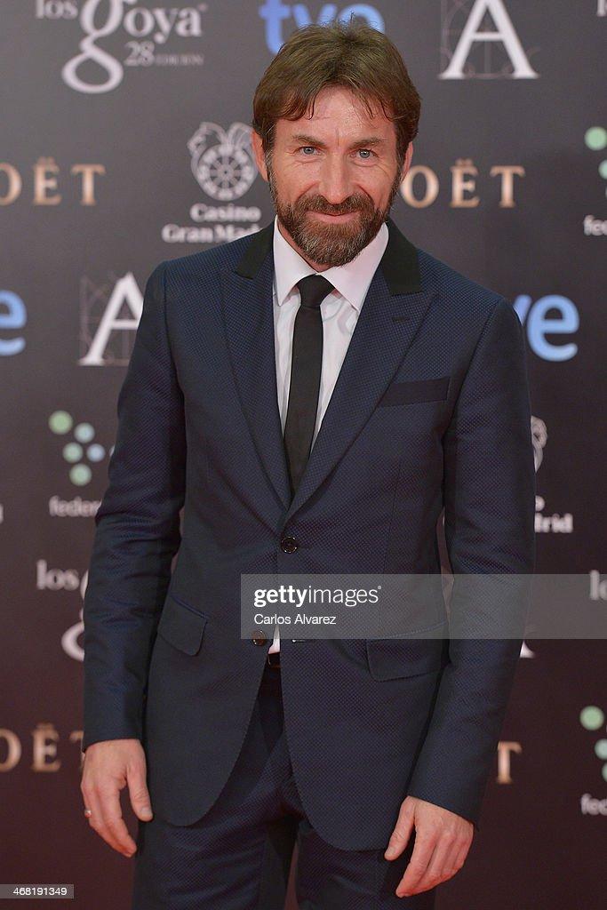 Antonio de la Torre attends Goya Cinema Awards 2014 at Centro de Congresos Principe Felipe on February 9, 2014 in Madrid, Spain.