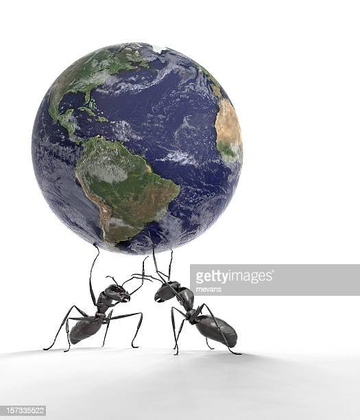 Ants Lifting the Earth