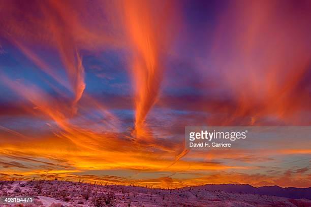 Anza-Borrego Desert State Park, California USA
