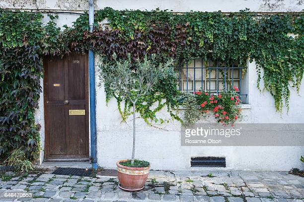 Apartment door shrouded in ivy.