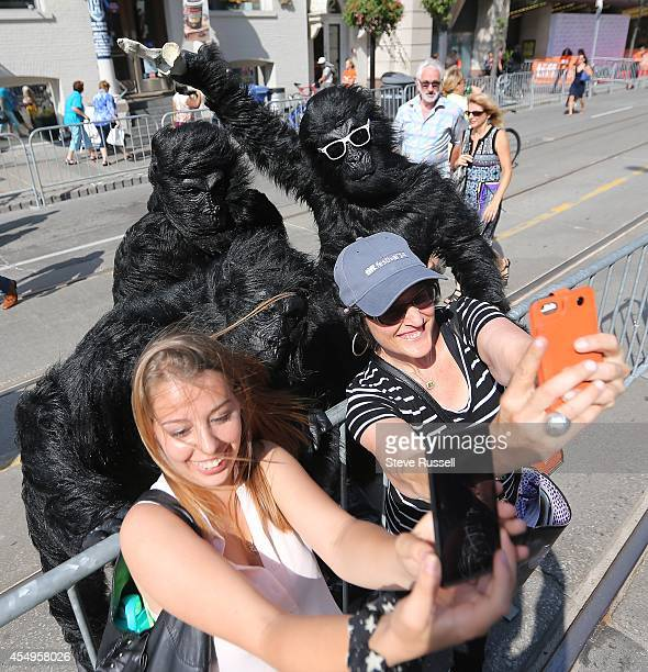 Apes promoting an app that uses Stanley Kubrick themes pose for selfies King Street West is closed between University and Spadina for the Toronto...