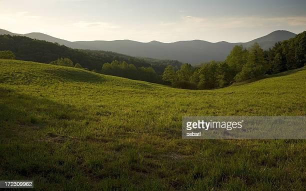 Appalachian Field