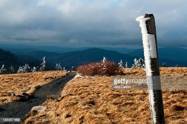 Appalachian Trail white blaze on Roan Bald