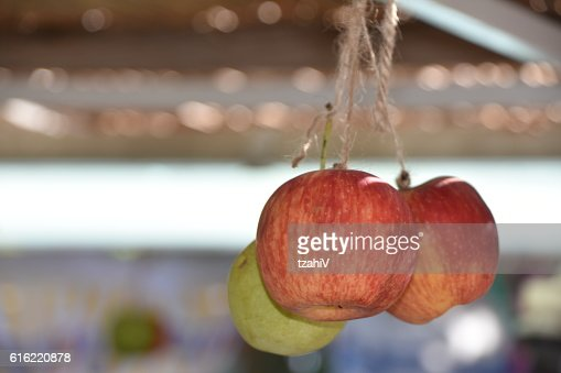Apple in a sukkah : Stock Photo