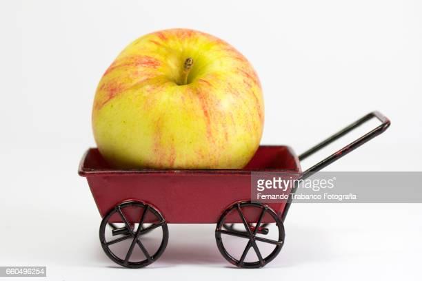 Apple in a wheelbarrow