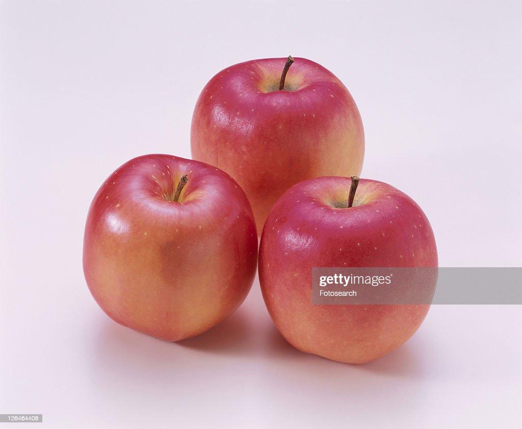 Apple, Mutsu, : Stock Photo
