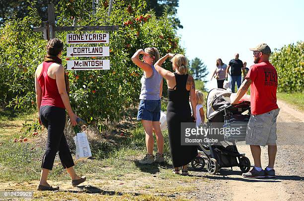 Apple pickers stop to look at a map that shows the locations for various varieties of apples at Russell Orchards in Ipswich Mass on Sept 13 2016 The...
