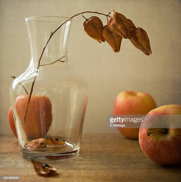 Apples and vase