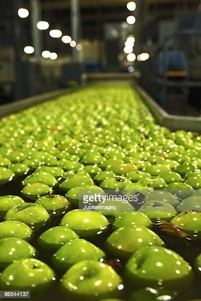 Apples in water in factory