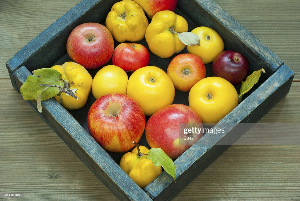 Manzanas, quinces : Foto de stock