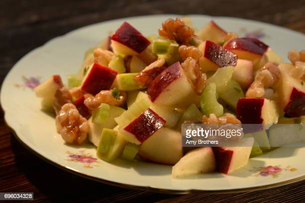 Applewalnut salad from silver palate cookbook part of a fall recipe package on September 15 2016 in Denver Colorado