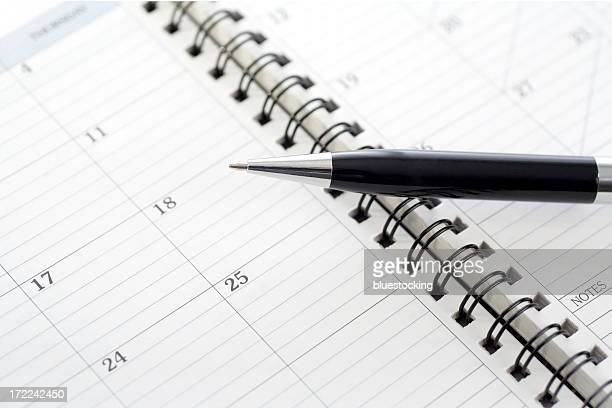Appointment Book Calendar and Pen