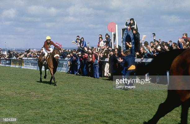 The crowd salutes Red Rum on his victory in the Grand National at Aintree racecourse in Liverpool England Mandatory Credit Allsport UK /Allsport