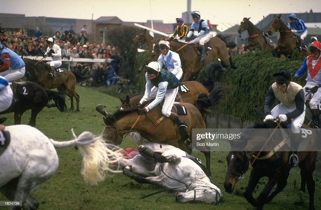 Dark Ivy (centre) lies on the ground having fallen jumping Beechers Brook during the Grand National at Aintree racecourse in Liverpool, England. \ Mandatory Credit: Bob Martin/Allsport
