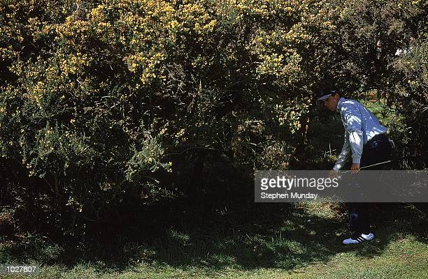Sergio Garcia of Spain and Continental Europe on 7th Green in the Greensomes during the inagural Eurobet Seve Ballesteros Trophy between Continental...
