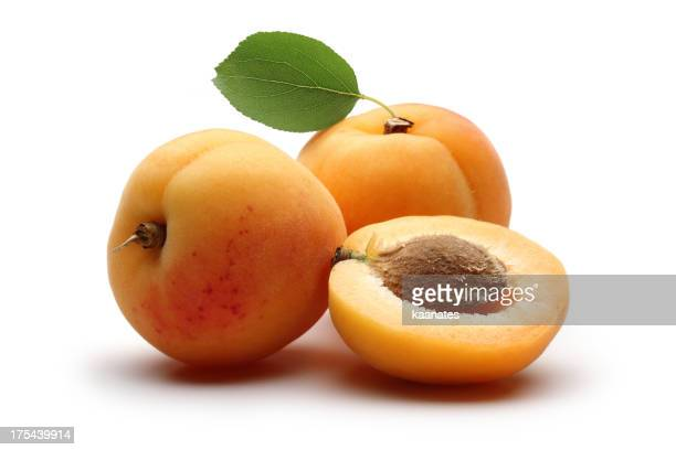 Apricots with Leafs