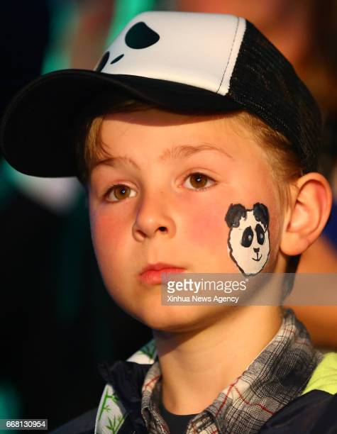AMSTERDAM April 13 2017 A child waits for pandas at Schiphol airport in Amsterdam the Netherlands on April 12 2017 Wu Wen and Xing Ya two Chinese...