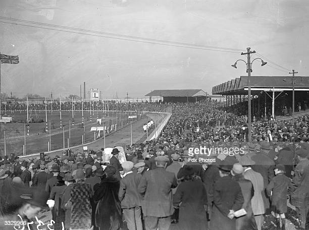 Harringay greyhound race track and a crowd of spectators